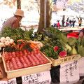 地元の新鮮野菜も売ってます。