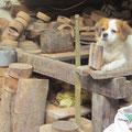 Werkstatt für Holzformen