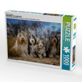 Puzzle Bearded Collies