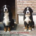 Lord Lucho und Coskan - noch ist er mein Großer Bruder :-)