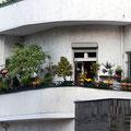 Jahnstraße 31
