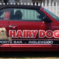 Hairy Dog Car