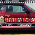 Hairy Dog Car