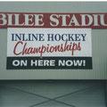 Inline Hockey, banner, paint on PVC skin.