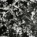 Trip noir n°22 -16/08/07-