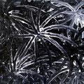 Trip noir n°7 -18/06/07-