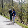 Erneuerung des Weges zum Märchenwald in Wünschendorf an der Elster