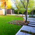 Urbaner Stadtgarten I Troisdorf