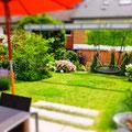 Moderner Familien-Reihenhausgarten I Brühl-Rheinland