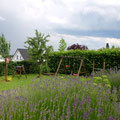 Privatgarten Einfamilienhaus I Bornheim-Rheinland