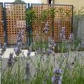 Stadt-Kunst-Garten I Neuwied