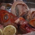 20 Liter Fischfond