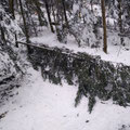 .. nach dem Schnee / Föhnsturm