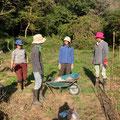 10月20日、農園管理プロジェクト