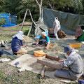 10月22日、上山口寺前谷戸復元プロジェクト