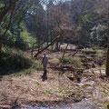 2月21日、イノシシ被害対策プロジェクト+大沢谷広場プロジェクト