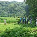 7月22日 寺前谷戸復元プロジェクト