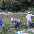 10月25日、農園管理プロジェクト