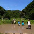 6月10日 寺前谷戸復元プロジェクト