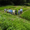 2014年8月24日、上山口寺前谷戸復元プロジェクト、8月定例作業