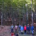 01月20日 森林づくり実践研修