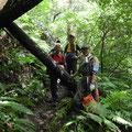 160702巡視プロジェクト「倒木処理」