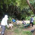 8月29日 農園管理プロジェクト