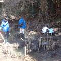 2月1日、生物保全・調査プロジェクト