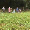 10月21日 農園管理プロジェクト+上山口寺前谷戸復元プロジェクト