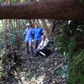 10月17日 二子山山系巡視プロジェクト