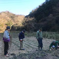180115 農園管理プロジェクト