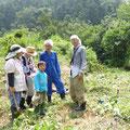 2015年08月08日、農園管理プロジェクト