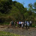 2014年5月25日、上山口寺前谷戸復元プロジェクト、5月定例作業