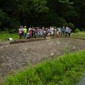 2014年5月25日、上山口寺前谷戸復元プロジェクト、5月定例作業(田植え)