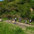 2015年04月26日、上山口寺前谷戸復元プロジェクト