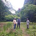 6月6日、イノシシ被害対策プロジェクト+大沢谷広場プロジェクト