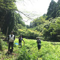 8月10日、イノシシ被害対策プロジェクト+大沢谷広場プロジェクト