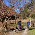 1月10日、イノシシ被害対策プロジェクト+大沢谷広場プロジェクト