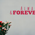 Always and Forever vinyl wall art quote from www.wallartcompany.co.uk