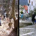 ...auf steilen Pfaden und glatten Stufen