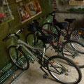 prêt de vélos possible / local bicycle loan or your bikes