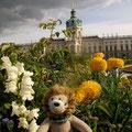 Im Schlosspark Charlottenburg gefiel es mir auch sehr gut.