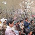 たくさんのお客様でした、場内は梅の香りと熱気で一気に春!です。