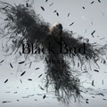Aimer - Black Bird