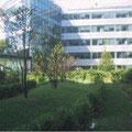 """Jardin sur dalles de l'immeuble """"River Plaza"""" (92)"""