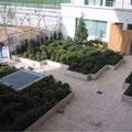Jardin Issy ( Paris - 1er)