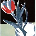 Tulip / tulp 1