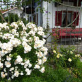 Foto aus dem Dorf, 83131 Nußdorf am Inn, Obst- und Gartenbauverein Nußdorf am Inn e.V.