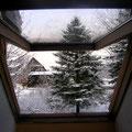Winterwelt Januar 2008