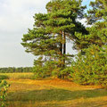 Foto: skb2010